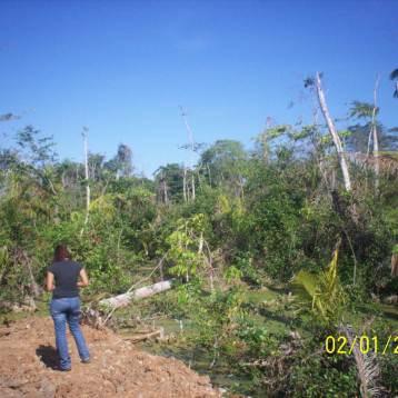 Provincia de Colon, Proyecto de Construccion de Zona Libre de Colon, ubicada en la Transistmica.